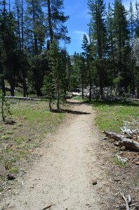 Tahoe-Yosemite Trail to the rest of the Tallant Lakes