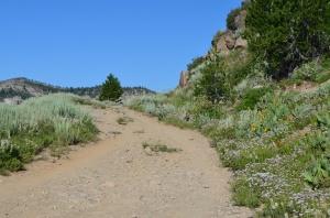 Trail rock gardens